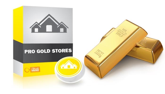 Phần mềm quản lý tiệm vàng bạc - Pro Gold Stores